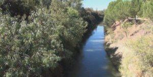 Canal del Duero - Valladolid