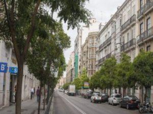 Calle Miguel Iscar de Valladolid