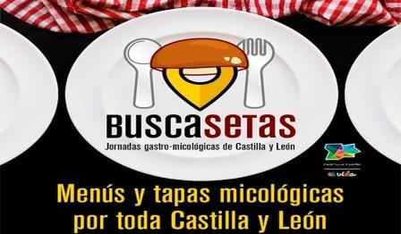 Jornadas Buscasetas